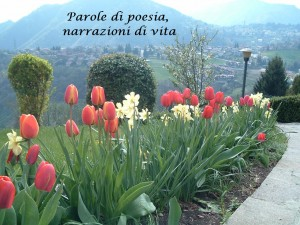 Aurora Cantini blog
