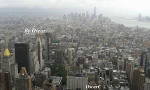 Manhattan dall'alto Oscar Carrara