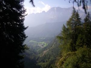 Selve maestose dalla Diga del Gleno, alta Valle di Scalve, Bergamo
