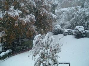 La prima neve ad Amora di Aviatico