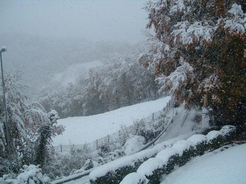 Neve bianca sulle foglie d'oro, riflessioni poetiche d'autunno