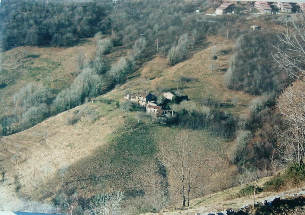 Predale 1980