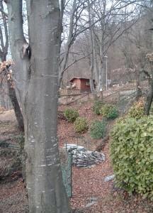 Una casetta nel bosco, Altopiano Selvino Aviatico