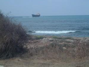 Macchia mediterranea (costa di Cipro)