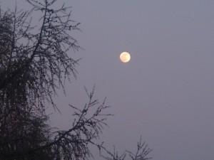 Luna piena del 25 aprile, magnifica