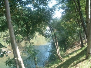 Il fiume Serio a Pradalunga