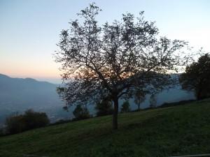 Autunno nei Ruc (ronchi) in Amora Bassa