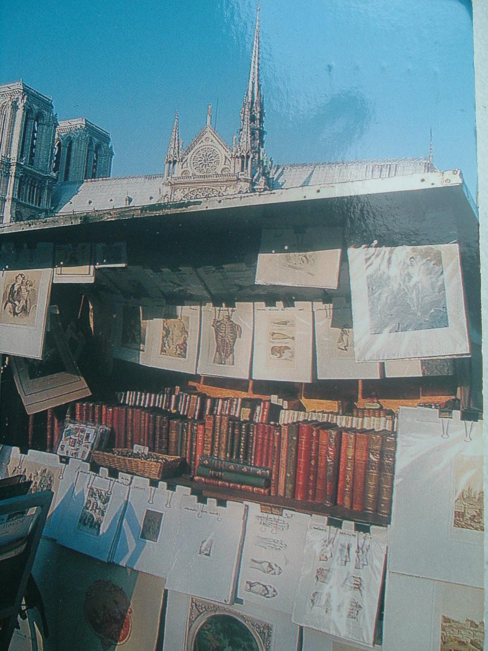 Libri sul LungoSenna a Parigi