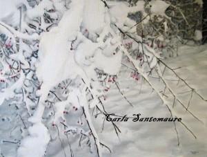 Parco Nord Milano, rosa canina a dicembre, dipinto di Carla Santomauro