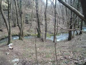 foto 5 il torrente Predale, qui un tempo era tutto prato