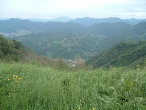 Foto 2 il fiume Serio, in basso nella Media Valle Seriana