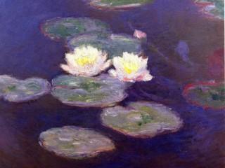 884549__monet-s-waterlilies_p-1