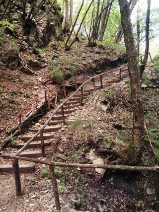 FOTO 1 Scaletta nel bosco di Perello