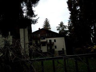 Parco Osio, Selvino, il luogo dove sorgeva Villa Osio, e l'abetaia ancora folta e robusta