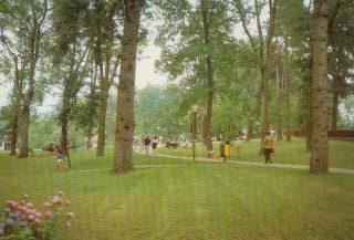 Parco Osio, Selvino