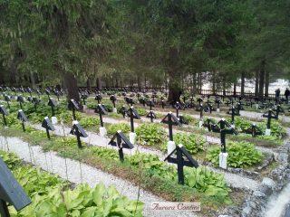 Le tombe dei Caduti del cimitero di Sorgenti