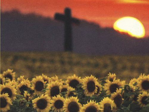 La croce sui girasoli, un inedito diario intimo della Ritirata di Russia
